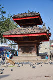 Traveler and nepalese people travel and take photo Basantapur Durbar Square Royalty Free Stock Photos