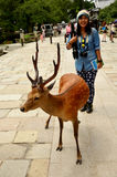 Traveler shooting photo with deers at garden of Todai-ji Temple Stock Images