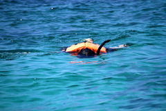 Traveler snorkeling with clear water at Similan island Royalty Free Stock Images