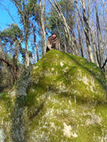 Traveler on top of a cliff in the woods. Traveler on top of a cliff in the forest, Caucasus Nature Reserve Stock Photos