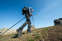 Traveler with trekking sticks and a backpack walks in the mountains Stock Photos