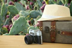 Traveler vintage luggage, camera and fedora hat over wooden table infront of a desert cactus. holiday and vacation concept. Traveler vintage luggage, camera and Stock Photo