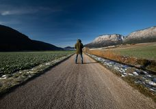 Traveler walking on a road in the fields royalty free stock images