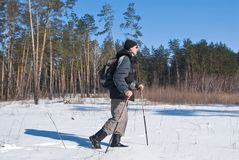 Traveler walking in a winter forest Stock Image