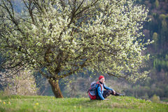 Traveler woman with a backpack near blooming tree. Traveler female with a backpack sitting on top of hill with yellow wildflowers near lonely blooming tree with Stock Image