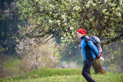 Traveler woman with a backpack near blooming tree. Woman in a red scarf on her head and blue jacket dresses the backpack on top of hill with blooming tree and Stock Photos