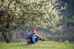 Traveler woman with a backpack near blooming tree. Smiling female with a backpack sitting on top of hill with yellow wildflowers near lonely blooming tree with Stock Photos