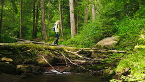 A traveler a woman in a down jacket and with a backpack crosses a mountain river over a log. A traveler a woman in a down jacket crosses a mountain river over a stock video