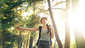 Traveler woman hitchhiking on a sunny forest road. Tourist girl looking for ride to start her journey. Traveler woman hitchhiking on a sunny forest country road Royalty Free Stock Image