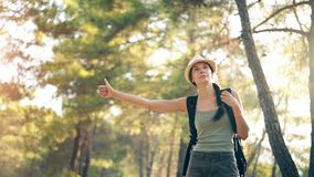 Traveler woman hitchhiking on a sunny forest road. Tourist girl looking for ride to start her journey. Traveler woman hitchhiking on a sunny forest country road Stock Photo