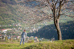 Traveler young man with backpack on hill Stock Photography