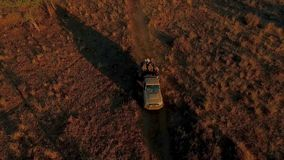 Travelers go on an off-road car on a safari at sunset. stock footage