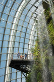 Travelers seeing waterfall in Cloud Forest Dome Royalty Free Stock Photo