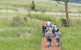 Travelers trekking on the way surrounded by green flowering gras Royalty Free Stock Image