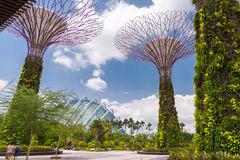 Travelers walking in Gardens by the Bay Stock Images