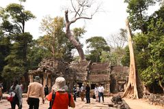 Traveling in Cambodia. Visiting the ancient temple Stock Image