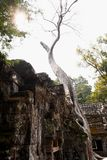 Traveling in Cambodia. Visiting the ancient temple Stock Images
