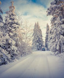 Traveling by the car in snowy forest Stock Photo