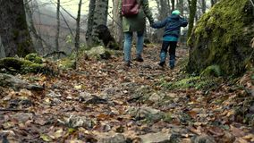 Mother And Son Are Walking Along Autumn Forest. Traveling With Child - Unidentified Young Mother And Little Son Are Walking Along Stony Autumn Forest During A stock video