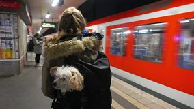 Traveling with a dog in backpack. Young woman at a subway station in Hamburg with a dog in a backpack stock photography