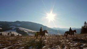 Traveling on horseback. stock video footage