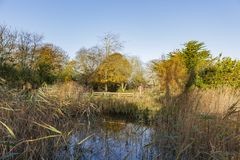 Traveling in the Hotham Park, Bognor Regis, United Kingdom. Around morning royalty free stock images