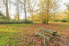 Traveling in the Hotham Park, Bognor Regis, United Kingdom Royalty Free Stock Image