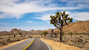 Traveling through Joshua Tree National Park Stock Image