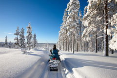 Traveling Lapland with snowmobile. Sunny winter landscape with a man traveling Finnish Lapland with snowmobile Stock Photography