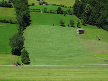 Traveling in green hill landscape by tractor Stock Photo
