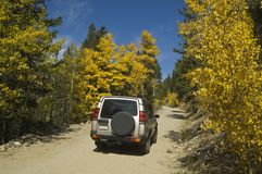 Traveling in the mountains west of Boulder, Colora. Four wheel drive vehicle travelling through the aspens in the high country of Colorado Stock Images