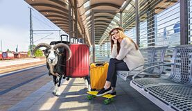 Traveling with pets by train