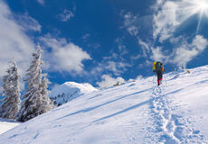 Traveling in snowy mountains. Royalty Free Stock Photo