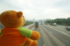 Traveling teddy bear Stock Image