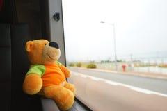 Traveling teddy bear Stock Photos