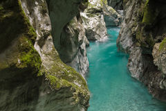 Traveling to wonderful nature in slovenia, canyon with turquoise river in julian alps. Hiking to wonderful deep canyons with crystal clear turquoise river Royalty Free Stock Images