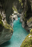Traveling to wonderful nature in slovenia, canyon with turquoise river in julian alps Royalty Free Stock Photography