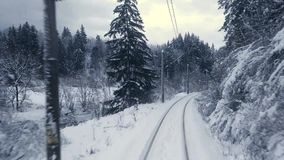 Train in winter forest scene. Traveling with train trough winter forest stock video footage