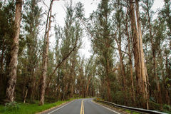 Traveling Upcountry Maui Stock Photos