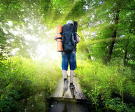 Traveller on bridge Royalty Free Stock Photo