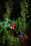 Traveller couple search and explore through tropical rain forest Stock Image