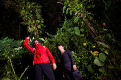 Traveller couple search and explore through tropical rain forest Stock Photography