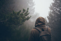 Traveler is walking in a forest with fog. Man walking got lost in a fog. Bad visibility. Easy to get lost Stock Image