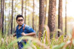 Traveller. A male traveller with backpack in the pine forest, Thailand Stock Photo