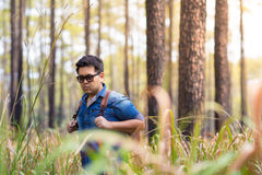 Traveller. A male traveller with backpack in the pine forest, Thailand Royalty Free Stock Photography