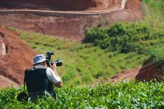 Traveller photographer shoots tea plantations Royalty Free Stock Photography