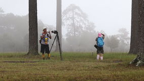 Traveller and Photographer are taking photo of the mist on Phu Kradueng National Park. Traveller and Photographer are taking photo of the mist in Phu Kradueng stock footage