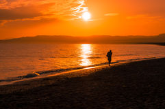Traveller at sunset. A man walking on the beach at the sunrise Stock Photography