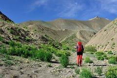 Trekking in the Markha valley in Karakorum mountains near Leh town. Traveller on the trekking on Markha valley trek route in Ladakh, Karakorum panorama. This Stock Photo