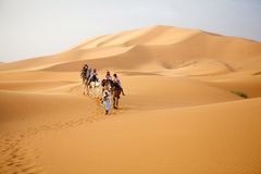 Travellers on the camels Stock Photo